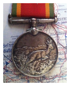 rsz_southafricawarmedal1